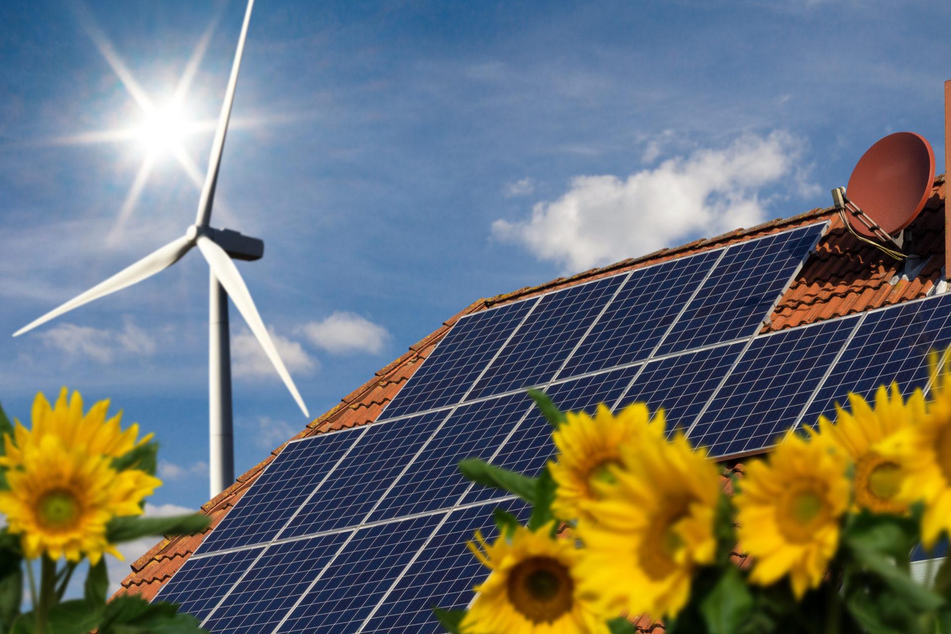 Transition écologique, l'assurance d'un environnement florissant !